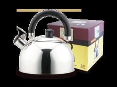 Чайник со свистком 2л TECO TC-120