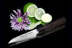 Нож кухонный стальной овощной (90мм) Tojiro Shippu FD-591