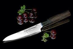 Нож кухонный стальной универсальный (130мм) Tojiro Shippu FD-592