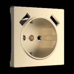 Накладка для USB розетки (шампань) WL11-USB-CP Werkel
