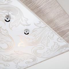 Настенно-потолочный светильник Eurosvet Lara 2961/3 хром/серый