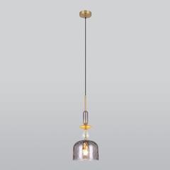Подвесной светильник со стеклянным плафоном Eurosvet Dream 50193/1 дымчатый