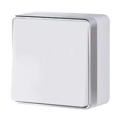 Выключатель одноклавишный проходной Gallant (белый) WL15-01-03 Werkel