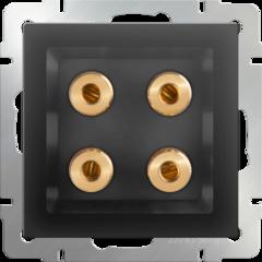 Акустическая розетка (черный матовый) WL08-AUDIOx4 Werkel