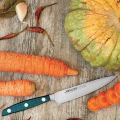 Нож кухонный для чистки 10 см ARCOS Brooklyn арт. 190123
