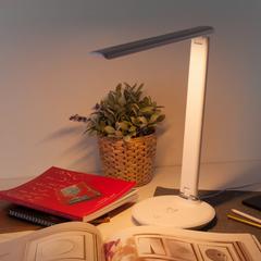 Настольный светодиодный светильник Brava белый Elektrostandard Brava Brava белый (TL90530)