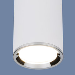 Накладной потолочный светильник DLN101 GU10 WH белый Elektrostandard