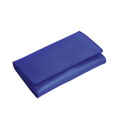 Маникюрный набор Erbe, 7 предметов, кожаный футляр, цвет синий 9192ER
