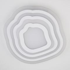 Потолочный светодиодный светильник с пультом управления Eurosvet Siluet 90119/4 белый