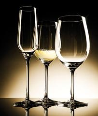 Набор из 2 бокалов для шампанского 230мл Strotskis Rossi арт.0203/2