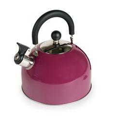 Чайник со свистком 3л Endever Aquarelle-302