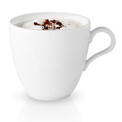 Чашка для капучино Legio 300 мл Eva Solo 886258