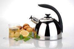 Чайник со свистком Lucia 2,5л BergHOFF 1104175