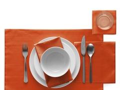 Салфетки в рулоне 20х20см (25шт) My Drap Terracotta SA21/909-1