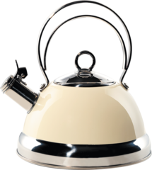 Чайник со свистком 2,5л Wesco 340520-23