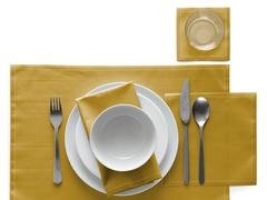 Сервировочные маты в рулоне 45х32см (12шт) My Drap Curry IA48/908-7