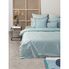 Набор из двух наволочек из сатина голубого цвета из коллекции Essential, 50х70 см Tkano TK20-PC0025