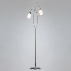 Напольный светильник Eurosvet Ginevra 22080/2F хром