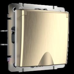Розетка влагозащ. с зазем. с защит. крышкой и шторками (шампань рифленый) WL10-SKGSC-01-IP44 Werkel