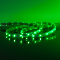 Комплект светодиодной ленты зеленой 10 м 4,4 Вт/м 60 LED 3528 IP65 LSTR001 220V 4,4W IP65 Elektrostandard
