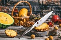 Нож кухонный универсальный 168мм Samura REPTILE SRP-0023/Y