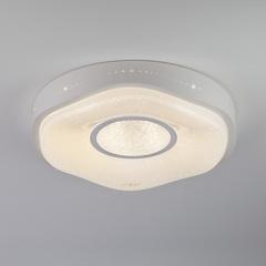 Светильник потолочный с пультом управления Eurosvet Shine 40011/1 LED белый