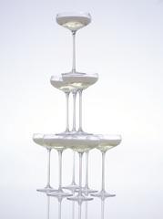 Набор из 4 бокалов для шампанского Wine 215 мл LSA International G1154-08-301