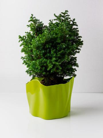Органайзер Flow средний зеленый