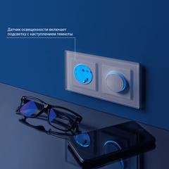 Розетка с заземлением и подсветкой (белая) WL01-10-03 Werkel