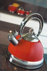 Чайник со свистком 2,5л Wesco 340520-62