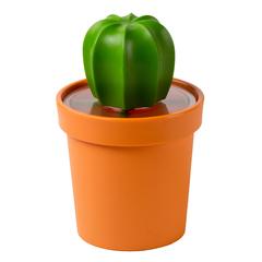 Емкость для хранения Cacnister с ложкой, оранжевая с зеленым Qualy QL10280-OR-GN