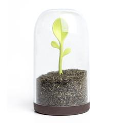 Контейнер для сыпучих продуктов Sprout Jar Qualy QL10205-BN
