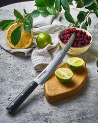 Нож кухонный для нарезки Танто 230мм Samura 67 Damascus SD67-0046MT