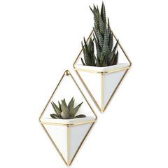 Декор для стен Trigg малый белый-латунь Umbra 470753-524