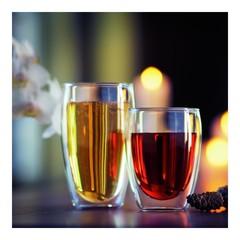 Набор бокалов Bodum Pavina 0,35 л. 2 шт. 4559-10